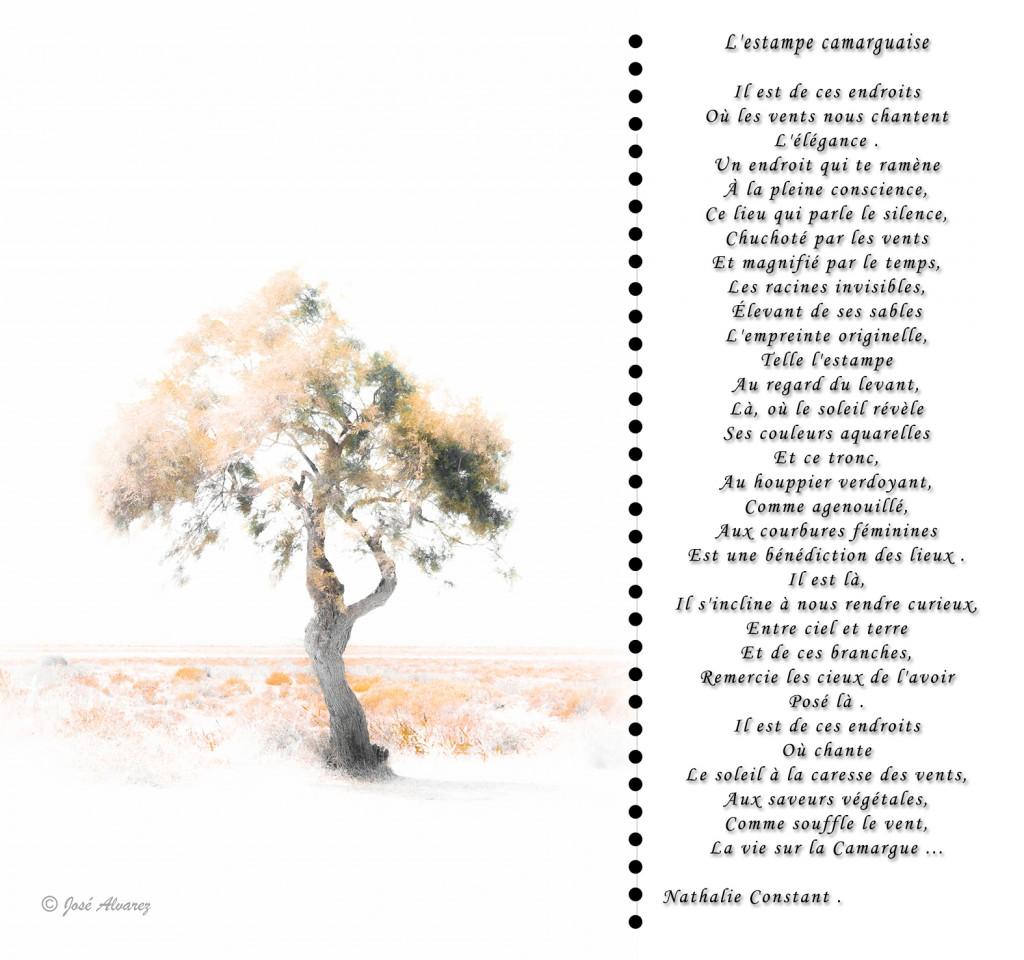 Poème de Nathalie Constant